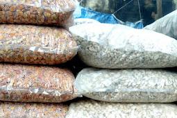 Harga Batu Sikat Per Plastik