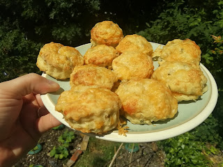 Cheese scones food tech