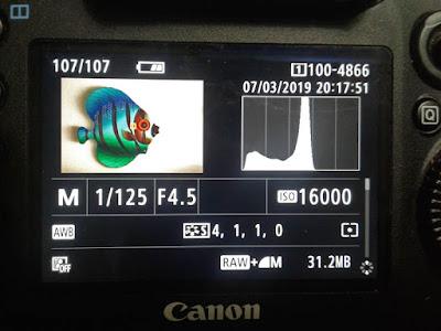 Histogram on camera LCD