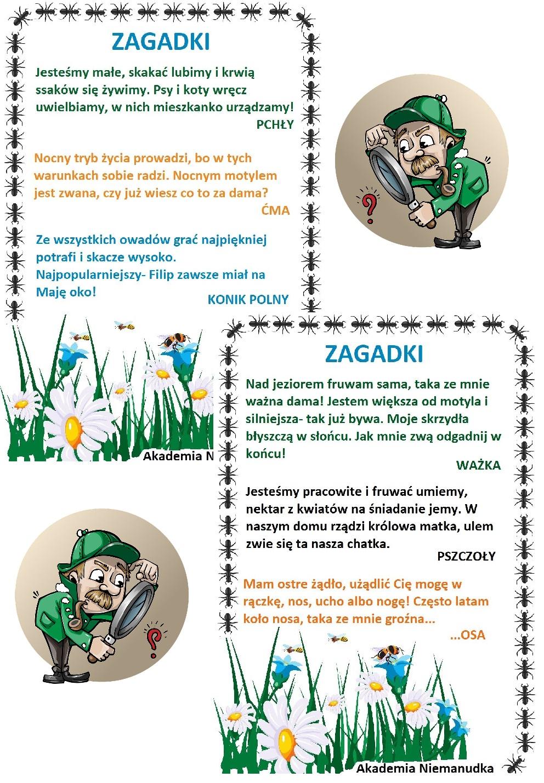 zagadki o owadach, zgadywanki o robaczkach, jaki to robak, wiosenna łąka, wiosna,