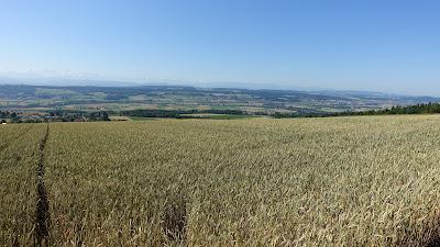 Bei Lommiswil, Blick Richtung Bucheggberg