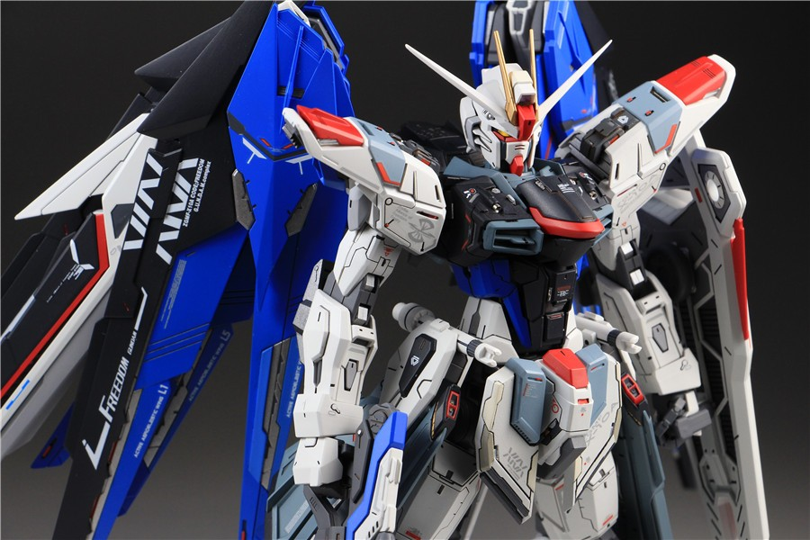Custom Build: MG 1/100 Freedom Gundam ver. 2.0 [Detailed]