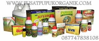 agen produk nasa palembang