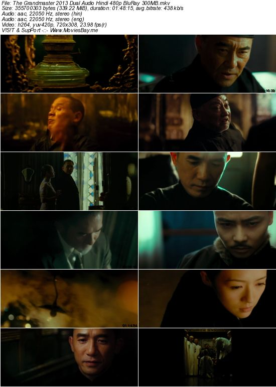 The Grandmaster 2013 Dual Audio Hindi 480p BluRay 300MB worldfree4u