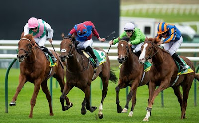 Frankel Watch: Quadrilateral Wins the Fillies' Mile (Group 1)