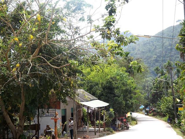 Thaïlande, Bangkok, kao sok, jungle, smiley, guesthouse