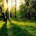 10 frases inspiradoras sobre la naturaleza