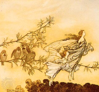 Image result for fairy rackham