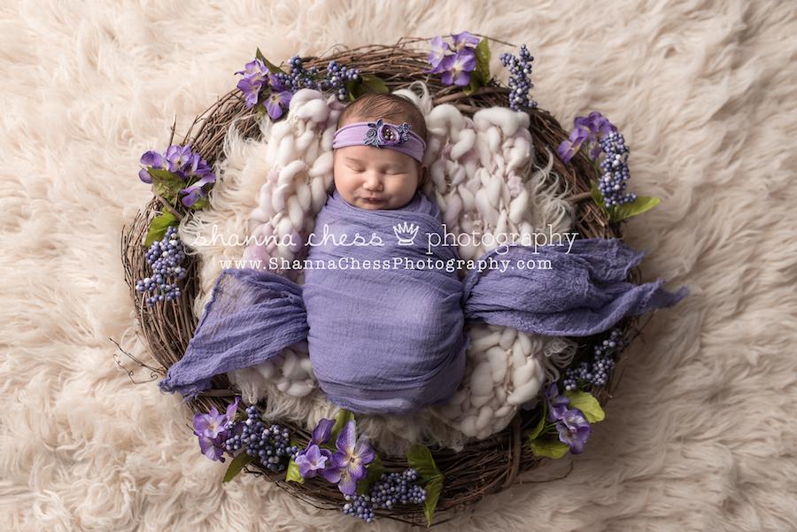 eugene oregon newborn photographer
