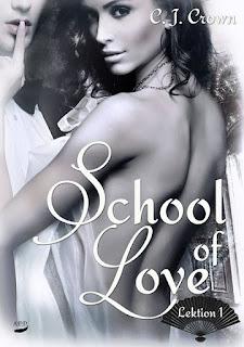 https://seductivebooks.blogspot.de/2016/11/rezension-school-of-love-lektion-1-c-j.html