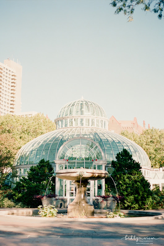 The Palm House Wedding at Brooklyn Botanic Gardens