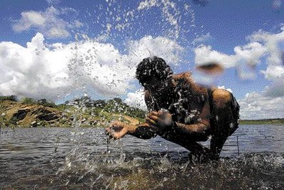 Resultado de imagem para água no sertão e chuva no sertão