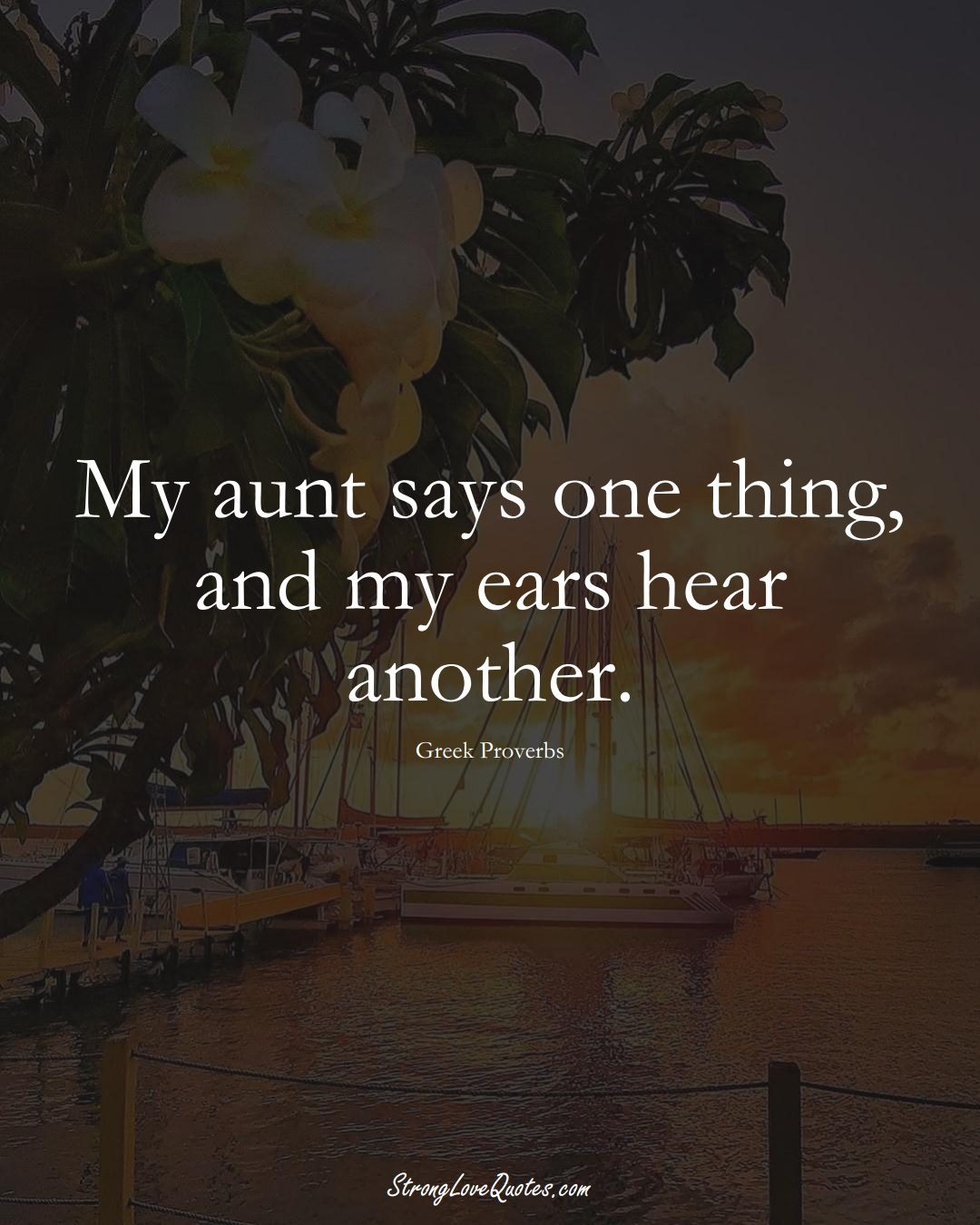My aunt says one thing, and my ears hear another. (Greek Sayings);  #EuropeanSayings