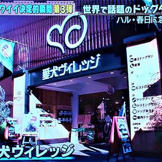 【ロケ利用】テレビ東京「どうぶつピース」に愛犬ヴィレッジが利用されました