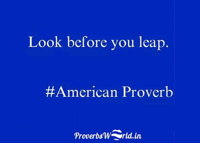 Look before you leap—American Proverb.