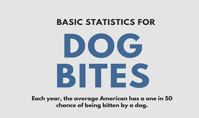 What Is My Dog Bite Injury Case Worth?
