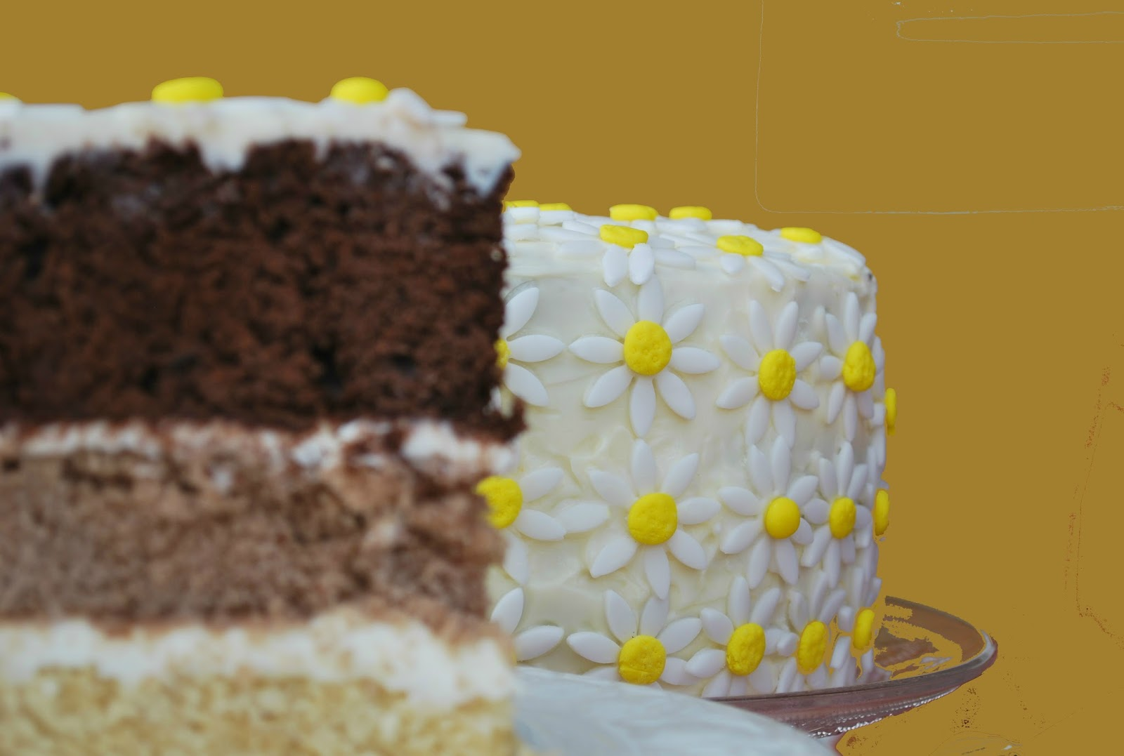 daisy-ombre-cake, margaritas-de-fondant, layer-cake-chocolate