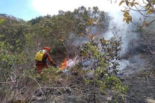 Detalha no combate ao incêndio florestal