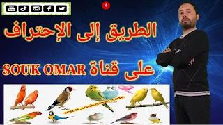 souk_omar