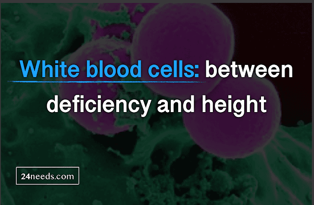White blood cells: between deficiency and height
