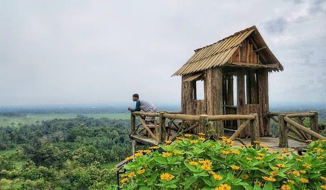 Bukit Bonsai Blitar Jawa Timur