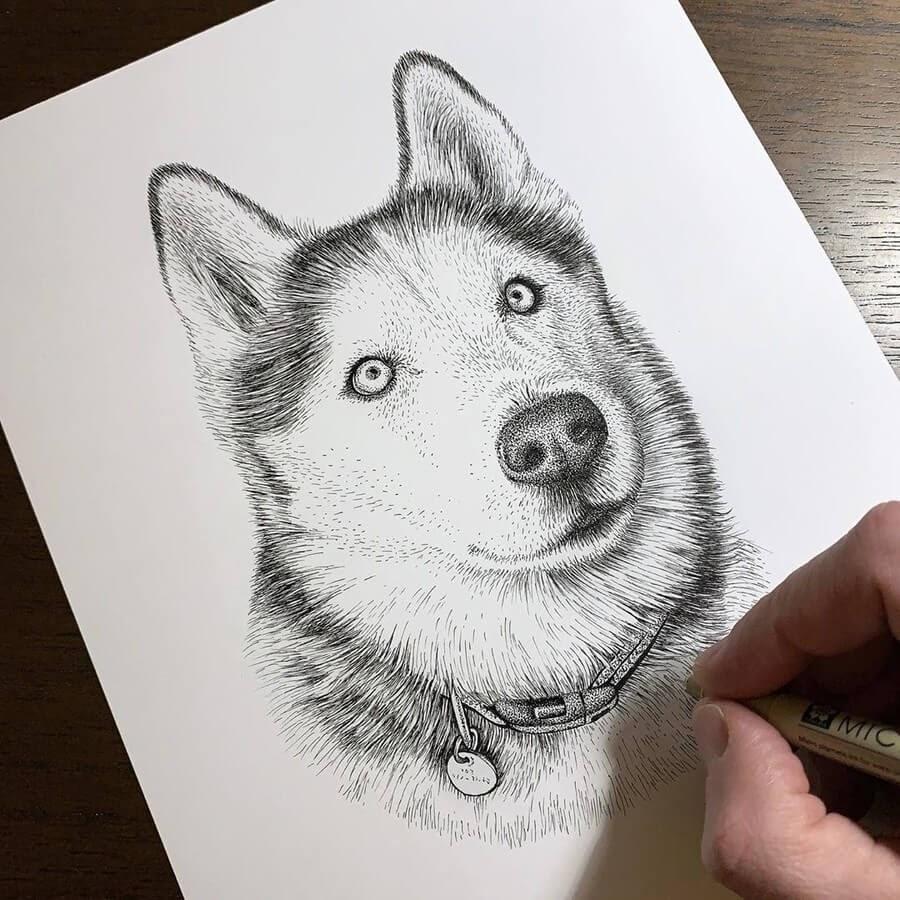 13-Husky-Dog-Steve-Habersang-www-designstack-co