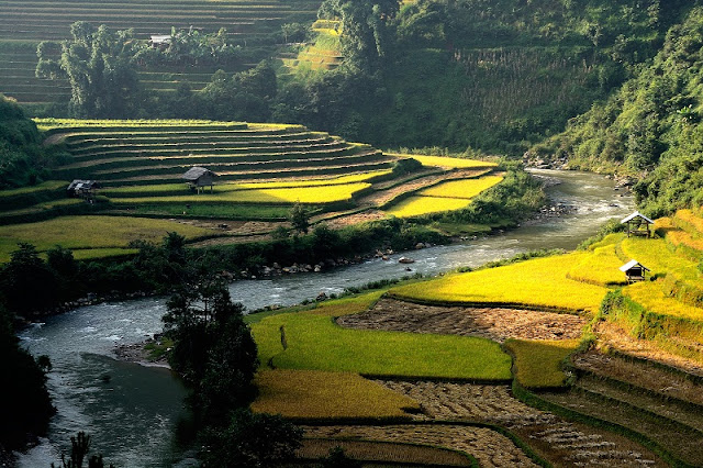 Travel Tips for Travellers with: Top Best Tours of Northern Vietnam 3