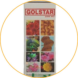 Deltagro Golstar 250 SC Accelerate and enhance generative growth. Golstar is a ZPT (Growth Regulating Substance) fertilizer which allows you to regulate flowering without causing abnormal growth. You can enjoy faster flower growth, be it ornamental flowers or flowering on fruit plants. Golstar contains stimulant hormones that can inhibit vegetative growth so that nutrients in plants are more focused on generative growth. This is perfect for those of you who want to focus on growing flowers and fruit. Your favorite plants will produce flowers and fruit well and more.