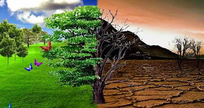 poster lingkungan hijau