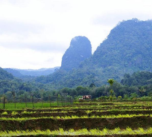 Keindahan Bukit Nanggar Jati | Pesona Alam Tapsel
