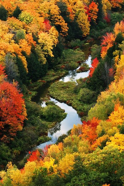 Porcupine Mountains Wilderness State Park, Michigan, USA