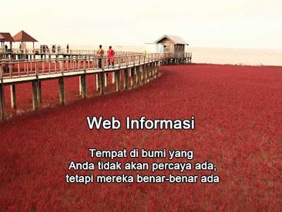 Pantai merah