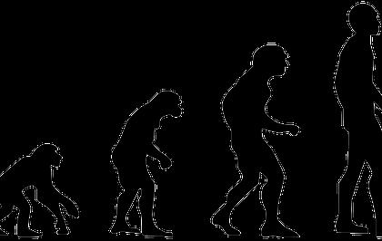 Benarkah  Manusia Keturunan Monyet? Membedah Teori Evolusi Darwin