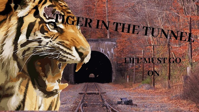 Summary of The Tiger in the Tunnel by Ruskin Bond