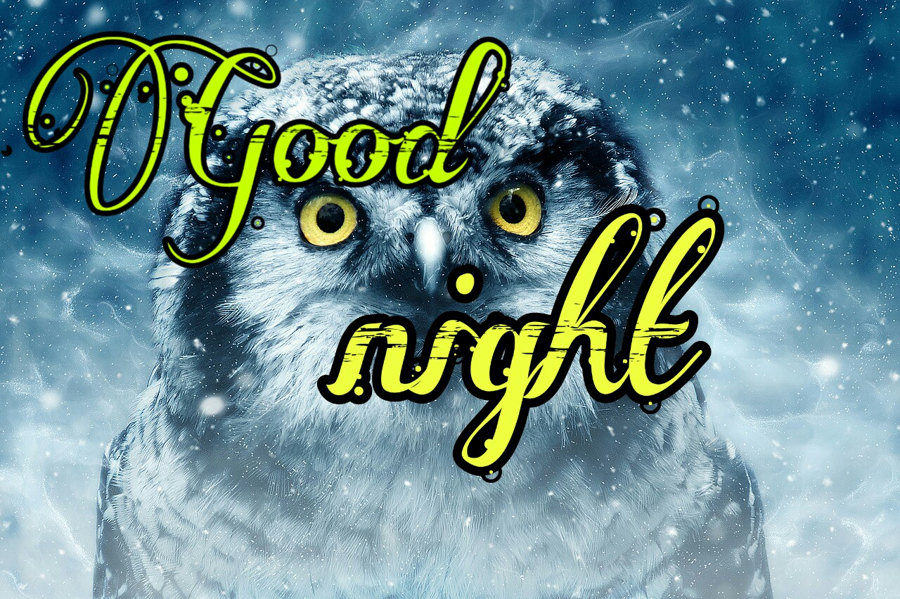 2000 Good Night Images Hd Pics Wallpapers Photos Download