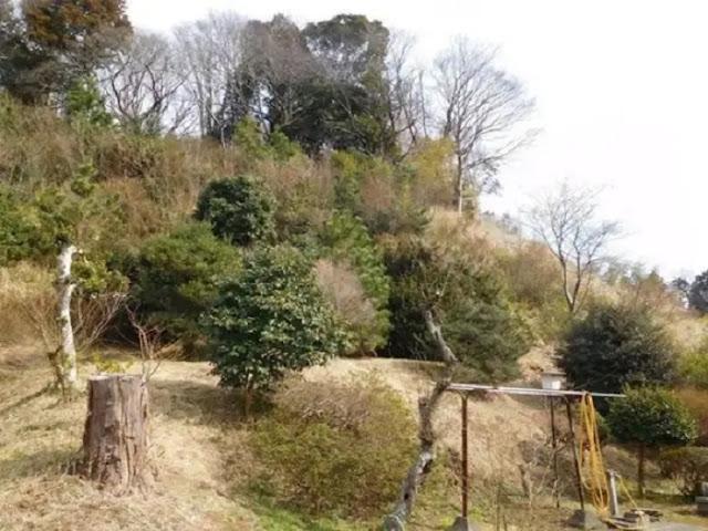 Tổng thể ngôi nhà rất rộng, có sân vườn thoải mái