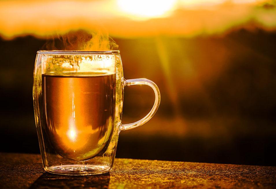 Kombucha Tea: Benefits and Side Effects