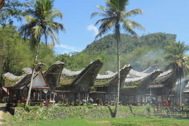Traditional Tana Torajan houses at Kete Kesu village