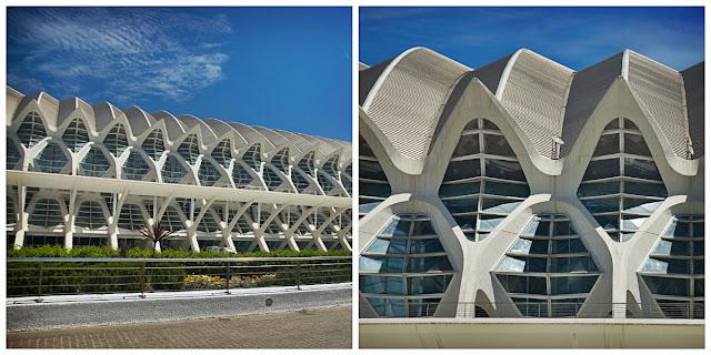 Discover the Ciudad de Las Artes y Las Ciencias in Valencia