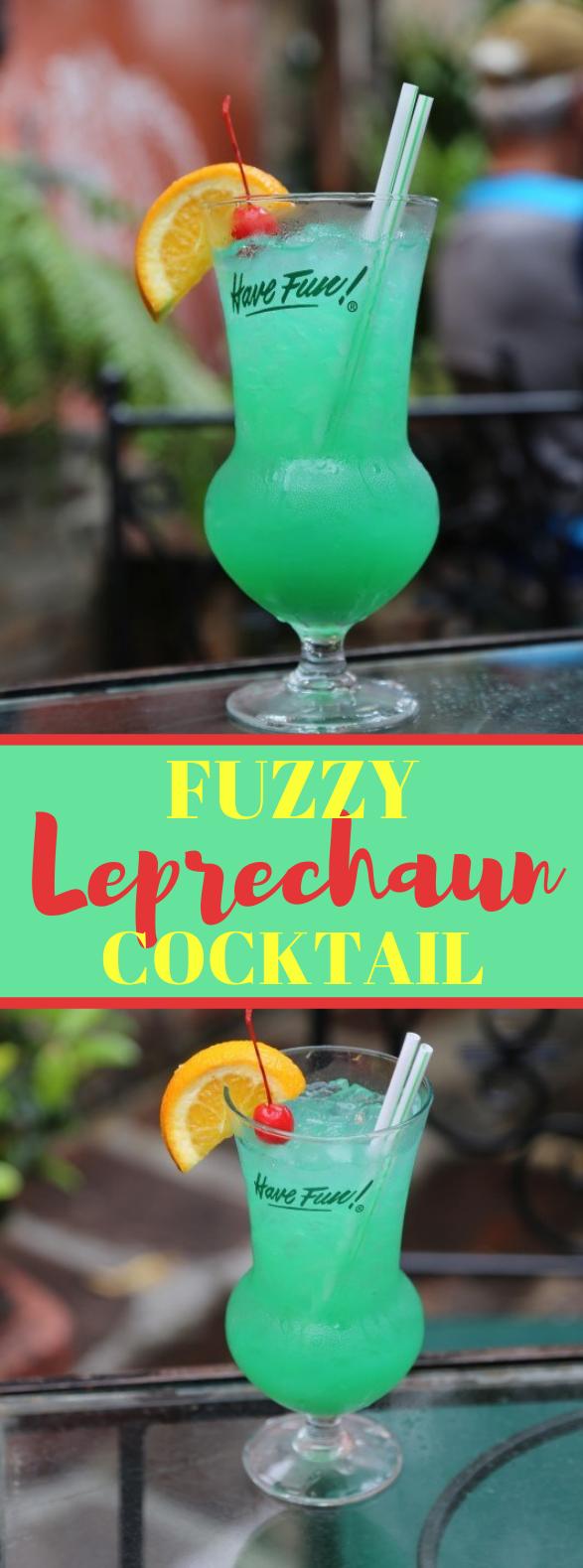 FUZZY LEPRECHAUN COCKTAIL RECIPE #drink #cocktails
