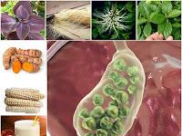Membuat Ramuan Herbal untuk Obati Batu Empedu dari Prof. H.M. Hembing Wijayakusuma