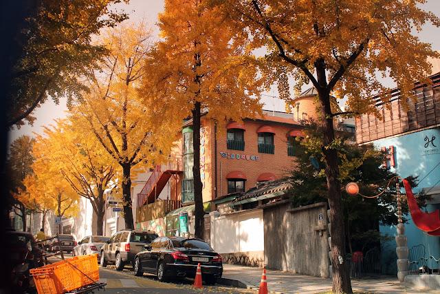 Autumn photography Seoul, Korea