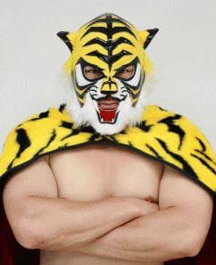 """<img src=""""タイガーマスク"""" alt=""""5代目タイガーマスクのミノワマン"""">"""
