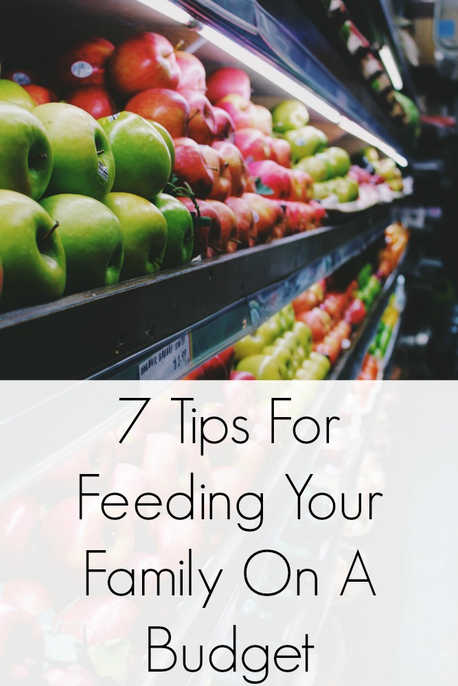 7 Tips For Feeding Your Family On A Budget