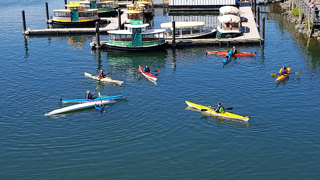Kayakers on a roll...