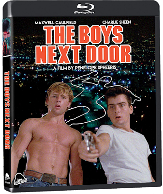 Cover art for Severin Films' THE BOYS NEXT DOOR Blu-ray!