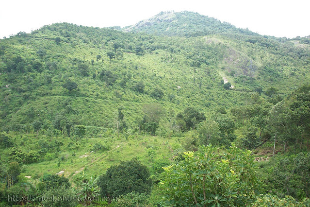 Killiyur Falls - Places to see in Yercaud
