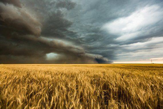 سندھ سے کشمیر تک موسلادھار بارشوں، خطرناک موسم کی آمد، کسان خبردار! فصلوں کو نقصان کا خطرہ۔