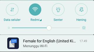 Cara Menghilangkan Wanita untuk Bahasa Indonesia dan Inggris di Semua HP Android