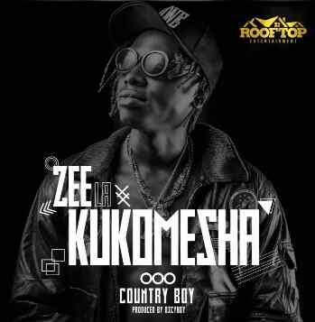 Download Mp3 | Country Boy - Zee La Kukomesha